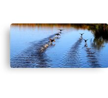 Running On Water Canvas Print