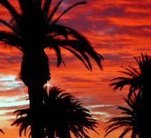 Sunset along St. Kilda beach Sticker