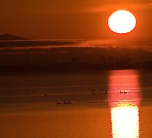 Sunrise in the Comox Valley by j Kirk Photography                      Kirk Friederich