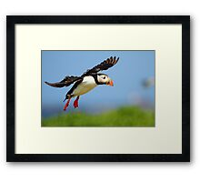 Prepare yourself......It looks like it could be a Puff landing!! Framed Print