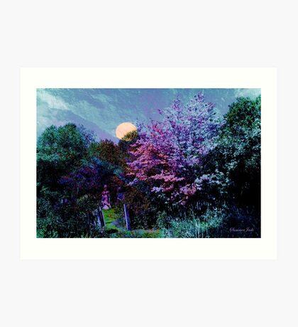 Magic on the Mountain ~ Beltane Twilight Art Print