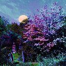 Magic on the Mountain ~ Beltane Twilight by SummerJade