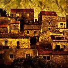 Neighbourhood by Andrew Paranavitana
