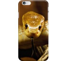 Tempter iPhone Case/Skin