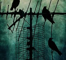 Silent Threats by Andrew Paranavitana