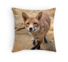 Brushy the fox Throw Pillow