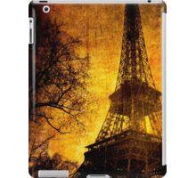Esthetic Luster iPad Case/Skin