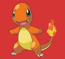 Little Charmander by Diddlys-Shop
