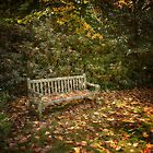 Some Enchanted Autumn by Steve Randall
