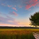Great Meadows Late Summer Setting by Owed To Nature