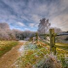 A cold day by Eddie Howland