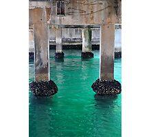 Swansea Bridge - Beauty Beneath Photographic Print