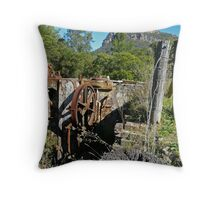 Relics of the Past Throw Pillow