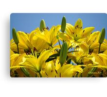 Yellow Lilies Sky High Canvas Print