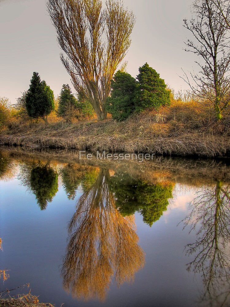 mirror image by Fe Messenger