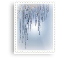 Looking Through the Icicles Metal Print