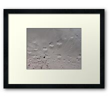 Busy Feet Framed Print