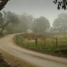Prendegast Lane,Cobaw,Macedon Ranges by Joe Mortelliti