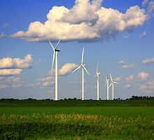 Wind mills : On the way to Minnesota by arpanamurthy