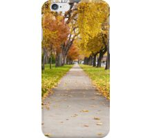 Autumn Walk Way iPhone Case/Skin