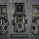 Yashica 44 by Keith G. Hawley