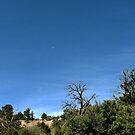 Mesa Verde by brucecasale