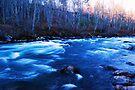 Winter Green River by Tori Snow