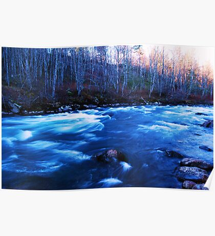 Winter Green River Poster