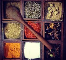 Flavours of India by twoleggedlizard