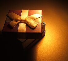 gifts of small packages by Kathleen Cameron