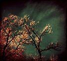 sorrow by Angel Warda
