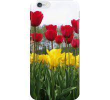 Tall Tulips iPhone Case/Skin