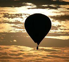 Bristol Balloon Fiesta by Flakkarin