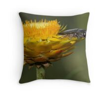 Leap of faith-Nail Can Hill Albury Throw Pillow