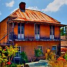Ghost House - Sofala - NSW - Australia by Bryan Freeman