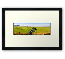 Willow in the Middle Framed Print