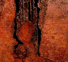 Corrosion by Erika Gouws
