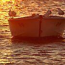 Swan Bay Sunset,Queenscliff by Joe Mortelliti