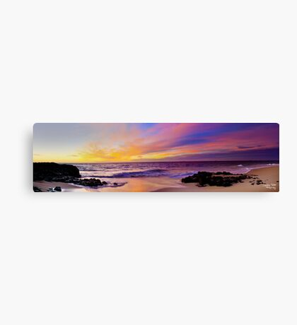 Painted Skys Canvas Print