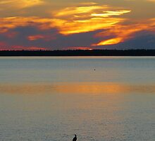 Sunset on Saint-Lawrence River - Québec by 29Breizh33