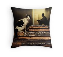 The Street Cat #0101 Throw Pillow