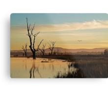 Flight, Lake Fyans, Grampians Metal Print