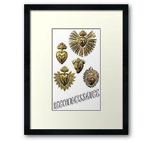RECONNAISSANCE (gold) Framed Print