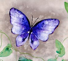 Butterfly Whimsy by writermore