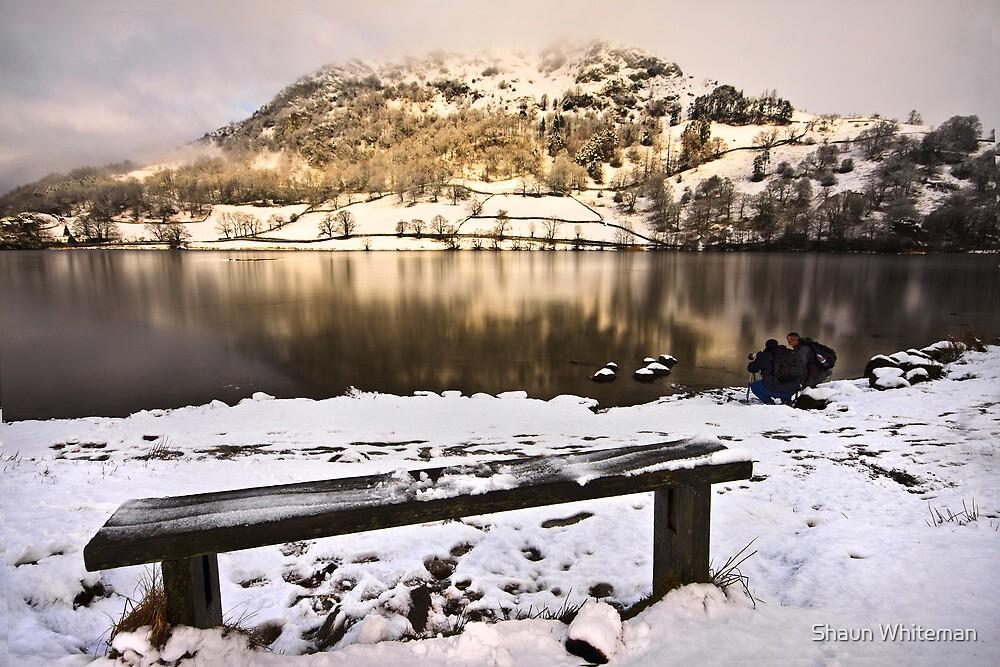 On golden pond by Shaun Whiteman