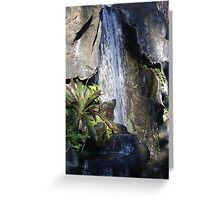 Restful Fountain Greeting Card