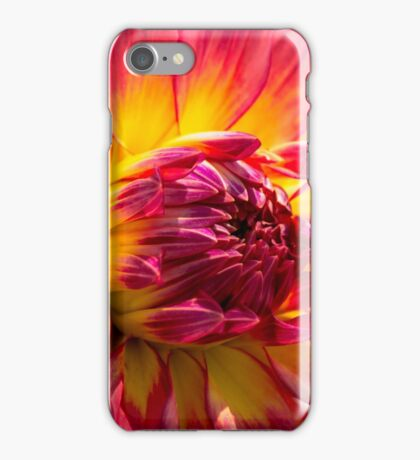 Living Color iPhone Case/Skin