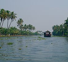 Houseboats on the Backwaters (Kerala, India) by Gorper