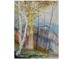 Birch At Stoney Brooke by Newhouser