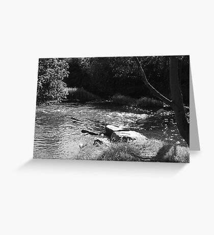 Reflections - Burrs Country Park Greeting Card